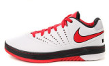 Nike Air Lebron E.E.