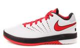 Nike Air Lebron E.E.