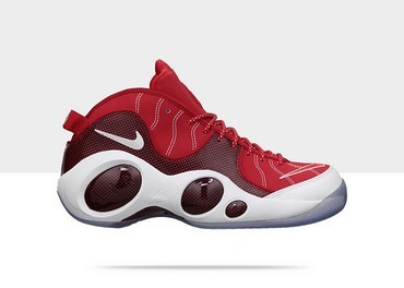 Zoom Flight 95
