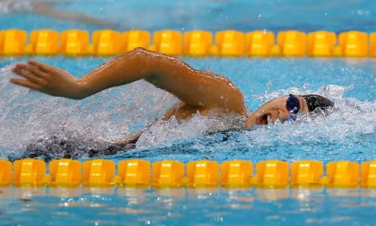 游泳亚锦赛中国33金,孙杨三破纪录
