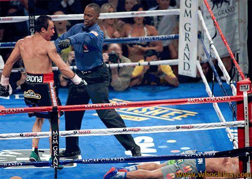 帕奎奥遗憾被马奎兹KO,遭遇连败