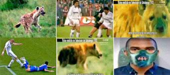 TV3做视频把皇马球员比鬣狗将遭皇马起诉