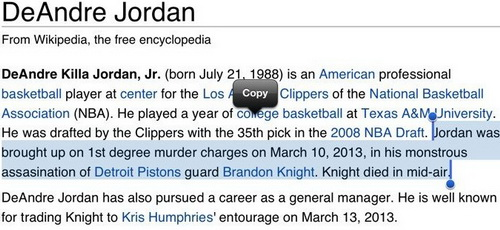 再囧!小乔丹的维基百科也被篡改了