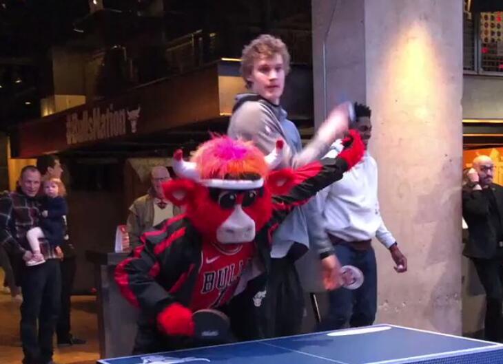内讧!马尔卡宁与公牛吉祥物打乒乓球时起争执