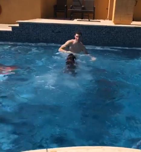 清凉夏日!鲍尔与爱犬一起游泳