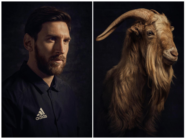 与羊共舞:梅西为杂志拍摄封面,山羊吃着草助阵