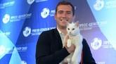 """复制章鱼保罗神迹?白猫""""阿喀琉斯""""当选世界杯官方预言官"""