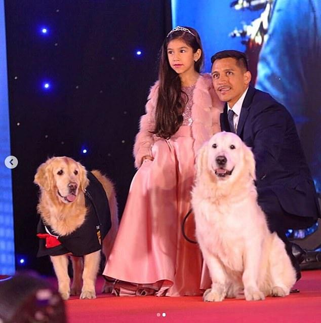 带着爱犬走红毯!桑切斯出席电影首映仪式