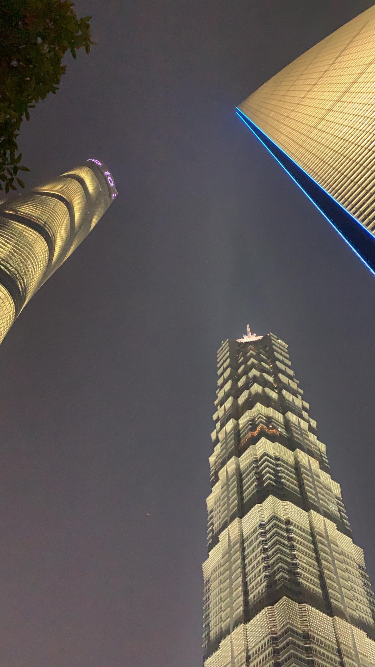 流连忘返!库兹马畅游上海享受魔都夜景