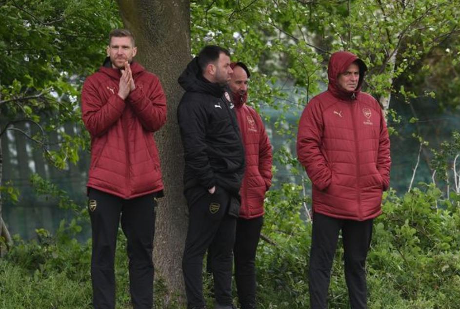 镜报:阿森纳青训营助教赫伦将担任俱乐部球探部门主管