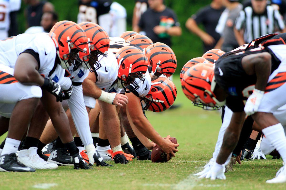NFL各队教练组成员最早可于周五回归球队基地