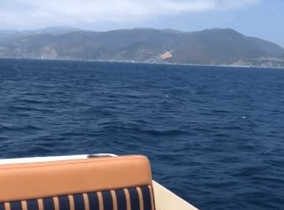 闲情逸致!路易斯-威廉姆斯坐船出海