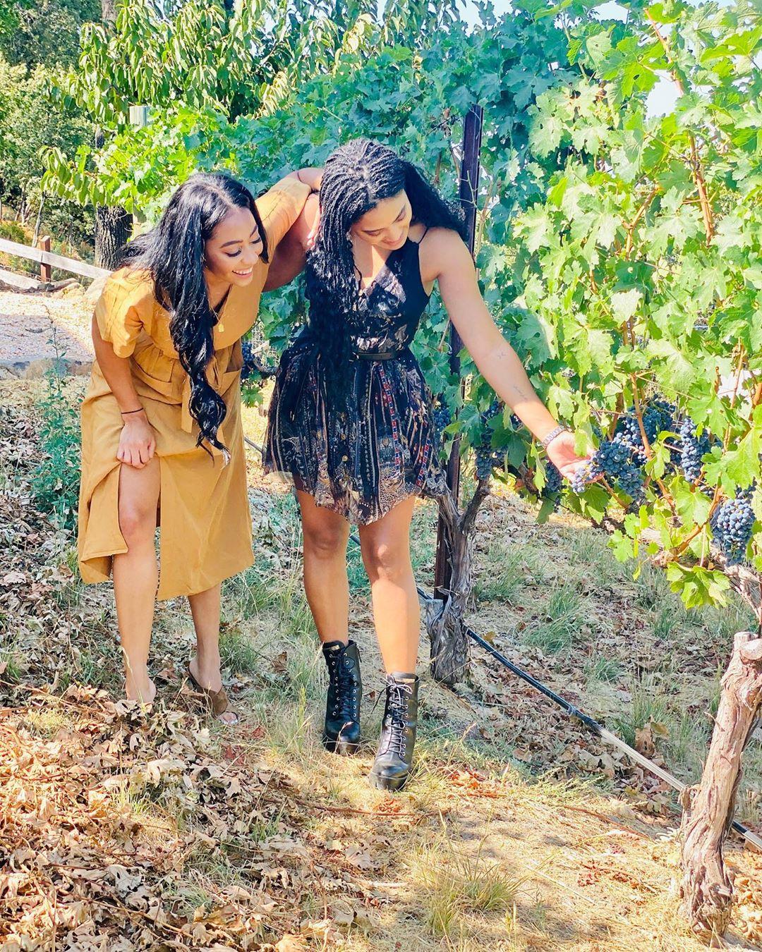 库里妹妹晒与阿耶莎合照宣传家族葡萄酒品牌