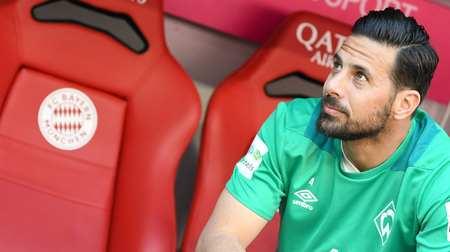 皮萨罗:不莱梅踢其他队时我希望不莱梅赢,踢拜仁除外